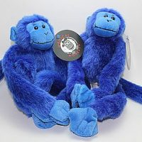 Blue Two pack plush medical monkeys for charity