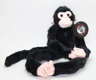 Chimpanzee Medical Monkey