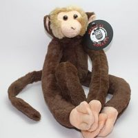 Langur Brown Medical Monkeys for Charity