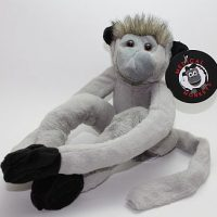 langur gray medical monkeys for charity