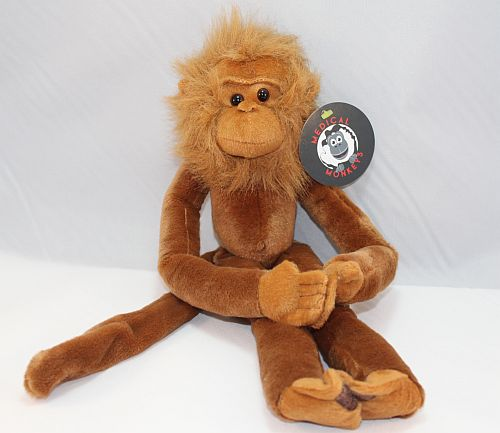 Medical Monkeys Orangutan